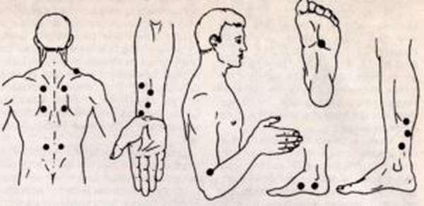 Активные точки на теле для похудения