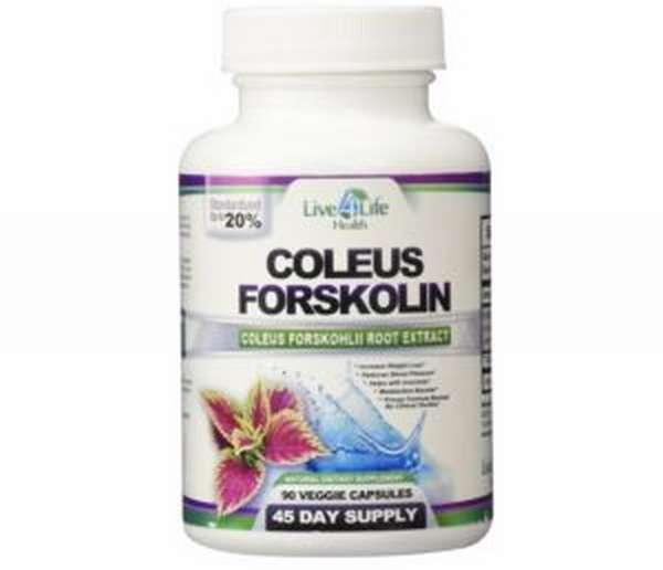 Колеус форсколин