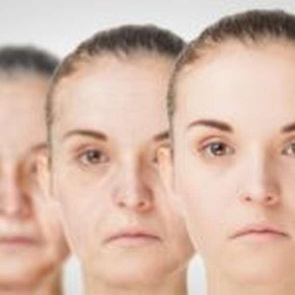 Замедляет процессы старения