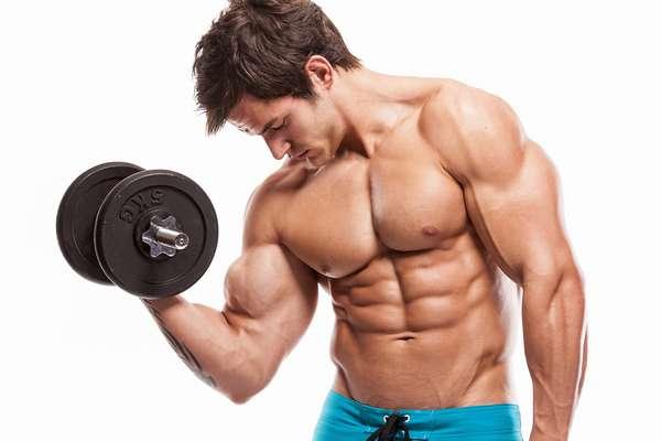 рост мышц при анаболизме