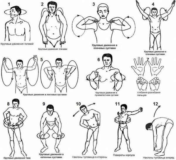 Разминка – основные упражнения