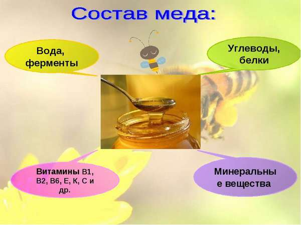 Ингредиенты меда