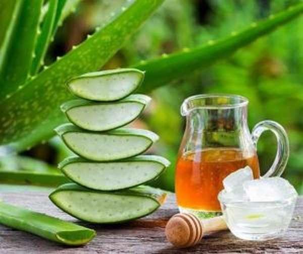 Домашний крем из натурального меда и листьев алоэ