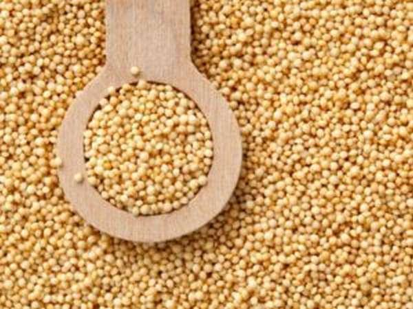 В семенах амаранта
