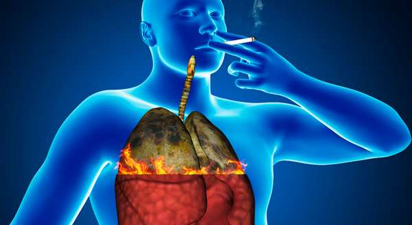 Физиологические процессы в организме при курении