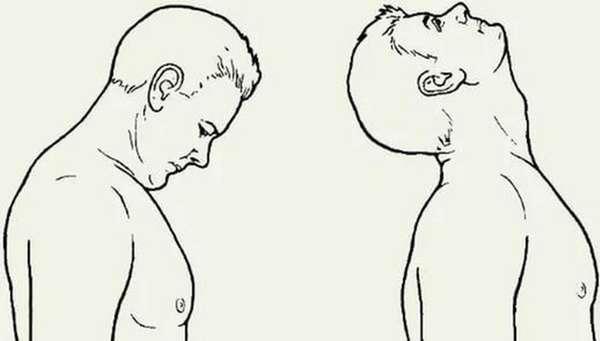 упражнения от второго подбородка
