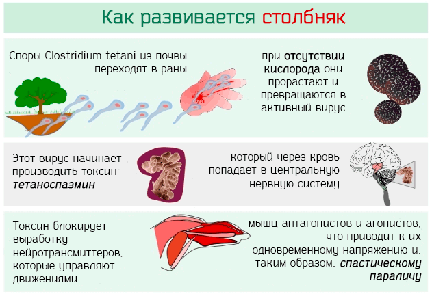 Возможные инфекции при ранении стопы