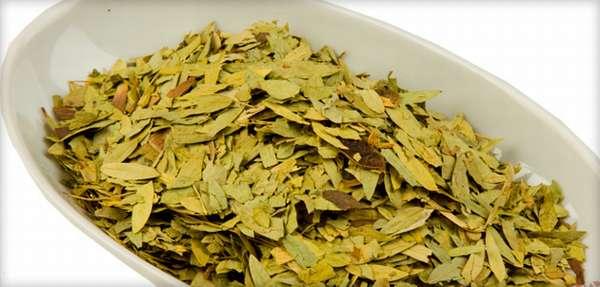Листья сенны