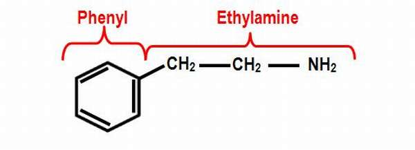 β-фенилэтиламин
