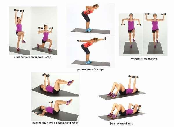 Виды упражнений с гантелями
