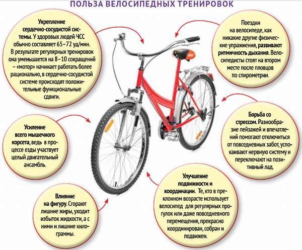 Что дают поездки на велосипеде