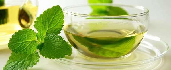 Рецепт медовой воды с мятой