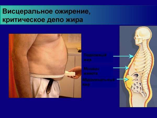 Критический запас жира