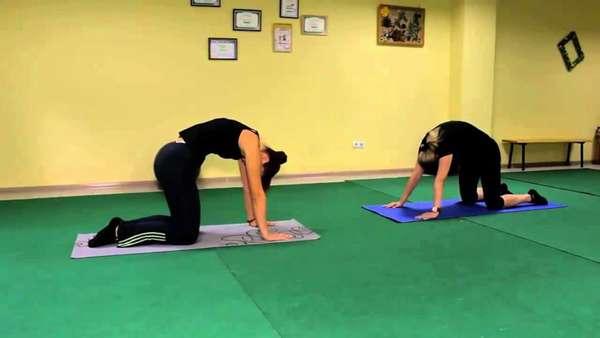 Тренировка гибкости