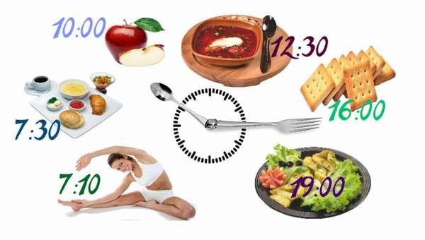 Распорядок принятия пищи
