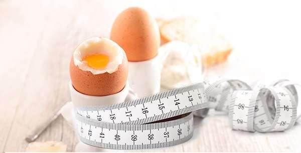 Отзывы о яичной диете