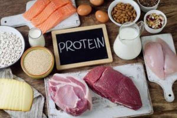 Меню на неделю белковой диеты для похудения с рецептами