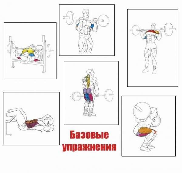 Базовые упражнения, фото