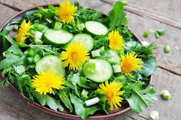 Салаты для похудения из листьев одуванчика