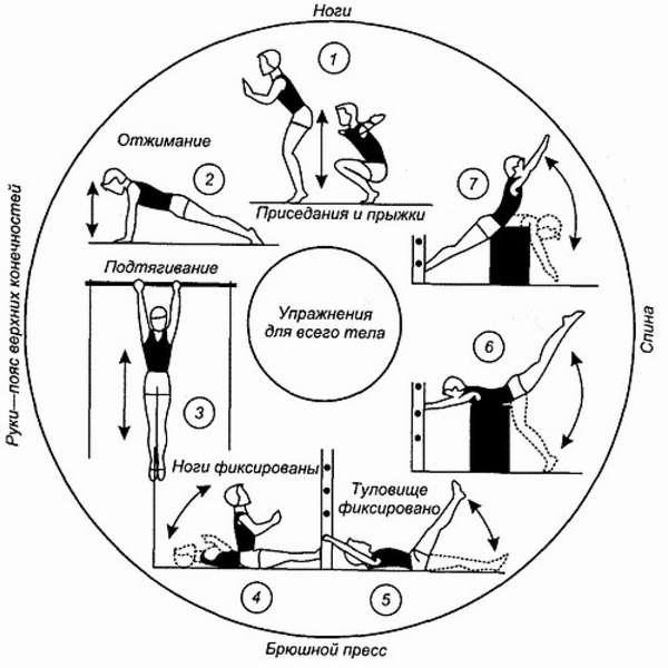 Круговые тренировки для женщин: примерный порядок занятия