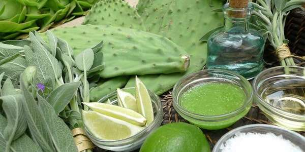 набор для массажа кактусом