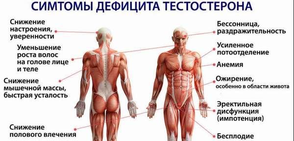 Тестостерон, фото