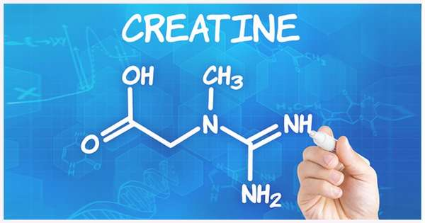 Оптимальное сочетание полезных аминокислот в пищевой добавке Креатин Макслер